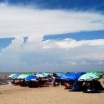 Du lịch Sài Gòn – Cần Giờ – Đảo Khỉ 1 ngày giá rẻ