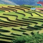 Du lịch Hà Nội city – Sapa 3 ngày 3 đêm