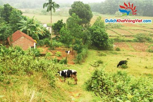 Hà Nội – Đồng Mô- Làng văn hóa các dân tộc – Trượt cỏ Asean Resort