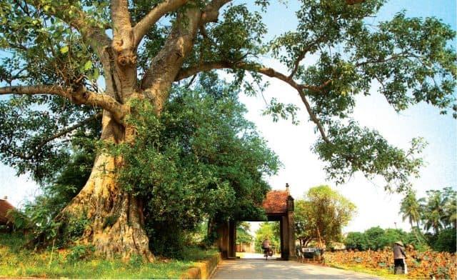 Cổng làng tại Đường Lâm còn nguyên nét cổ kính