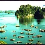 Hà Nội – Hạ Long 2N ( du thuyền 4 sao Paloma)