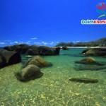Du lịch Miền Nam: Long Xuyên-Châu Đốc-Hà Tiên-Phú Quốc