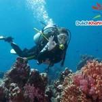 Du lịch Phú Quốc: Câu Cá ngắm San Hô 1 ngày