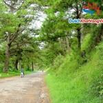 Du lịch Nha Trang – Đà Lạt 4 ngày giá rẻ từ Hà Nội