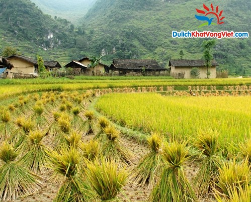 Du lịch Sapa – Hạ Long – Ninh Bình – Hà Nội City