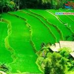 Du lịch Indonesia:  Batubulan – Mengwi 4 ngày 3 đêm
