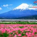 Nhật Bản – Narita – Tokyo – Núi Phú Sĩ – Hakone – Disneyland