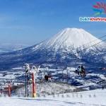 Du lịch Nhật Bản: Ngắm hoa Anh Đào