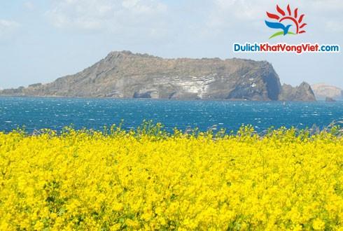 Du lịch Hàn Quốc: Đảo Jeju điểm hẹn của Tình yêu 5 ngày 4 đêm
