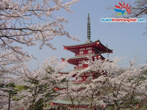 Du Lịch Liên Tuyến Nhật – Hàn 8 Ngày 7 Đêm
