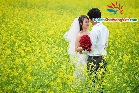 Du lịch Trăng mật Nha Trang-Đà Lạt 6 ngày giá rẻ khởi hành Hà Nội