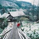 ngắm núi hoa bốn mùa ở thị trấn Sa Pa