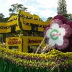 Du lịch festival hoa Đà Lạt 3 ngày 2 đêm