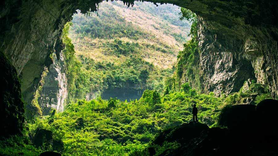 Những khu rừng nguyên sinh xanh mát