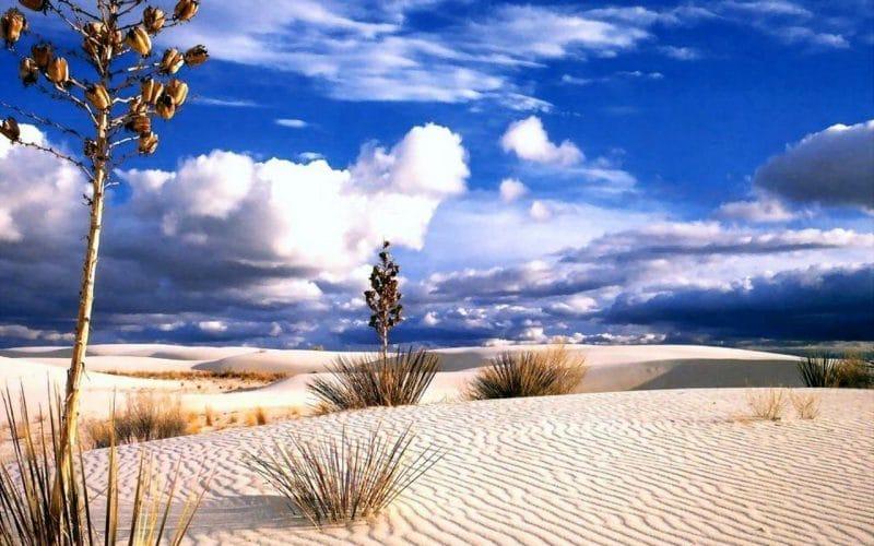 cách chụp ảnh sa mạc khi đi du lịch