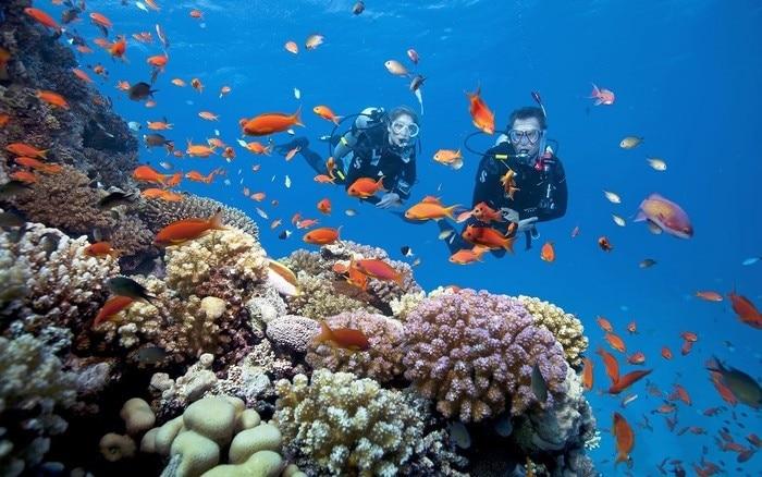 Trải nghiệm cảm giác lặn biển Nha Trang