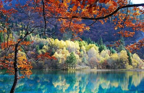 Hồ nước và rừng cây vào mùa thu.