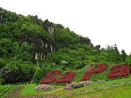 hình ảnh núi rừng Sapa