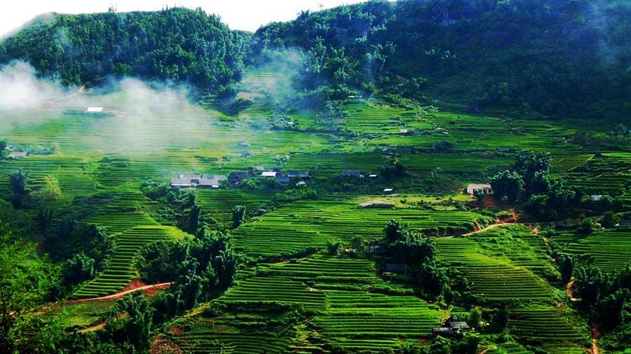 Du lịch Mộc Châu Sơn La - Khám phá vẻ đẹp thiên nhiên diệu kỳ