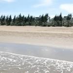 Tour du lịch biển Hải Tiến 1 ngày gói Siêu rẻ từ Hà Nội – khách đoàn