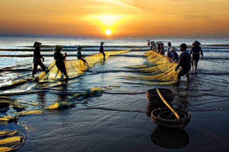 Các ngư dân kéo cá buổi sớm