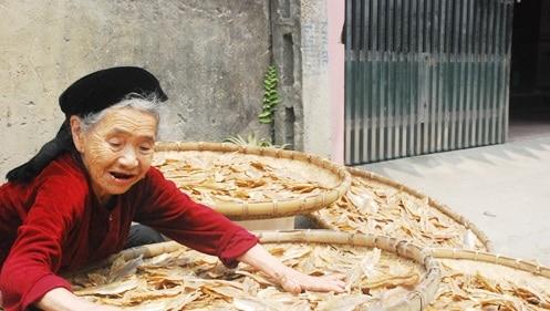 Chế biến cá tại làng chài Nghi Thủy - Cửa Lò