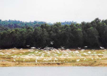 Tiềm năng du lịch Hồ Kẻ Gỗ – Hà Tĩnh