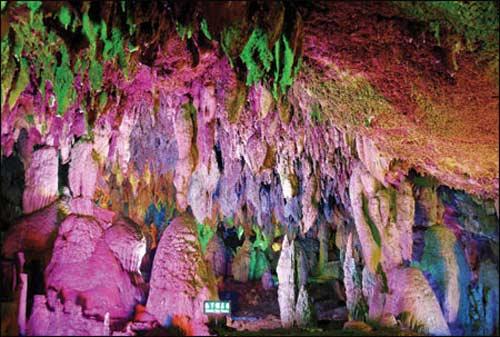 Kỳ bí hang dơi Phú Quốc