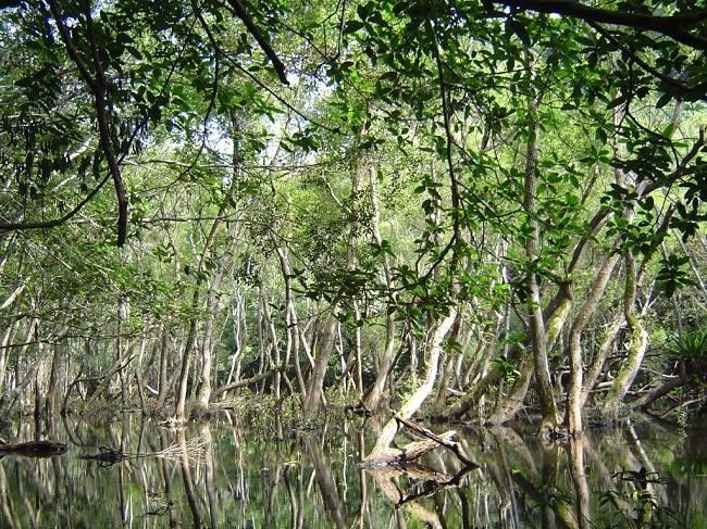 Hồ Ếch thu hút bởi cảnh quan tuyệt vời như tranh.