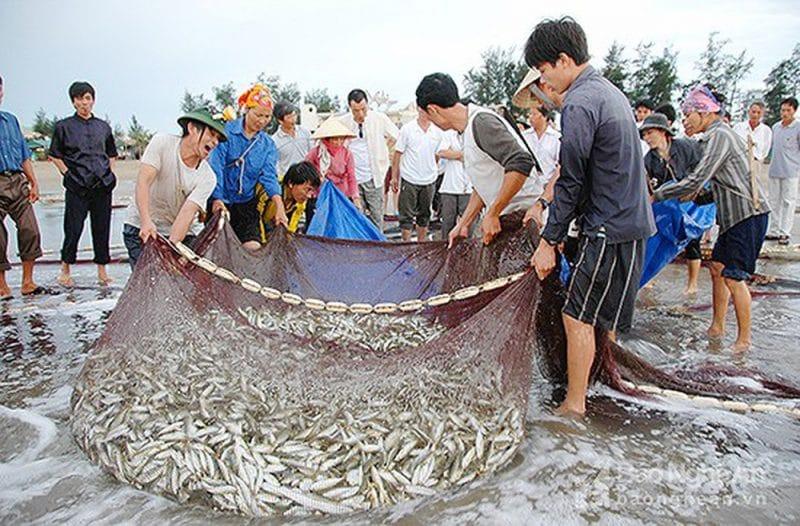 Ngư dân làng chài Nghi Thủy gắn liền với nghề cá