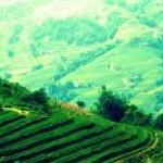 Sapa – vùng đất kỳ ảo