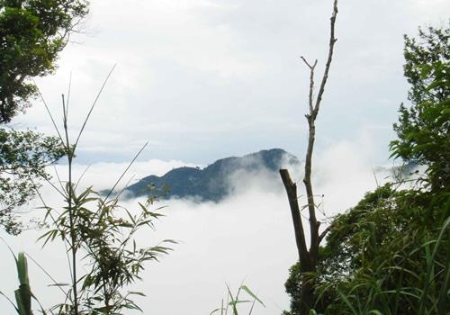 Hè 2014 Đổ xô du lịch Tam Đảo tránh nóng