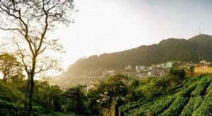 Các điểm du lịch Tam Đảo nổi tiếng thu hút khách du lịch
