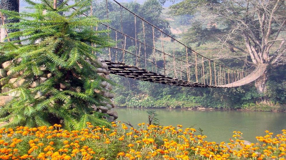 Những chiếc cầu mây là điểm nhấn đặc biệt, thu hút các du khách khi đến Thung lũng Mường Hoa