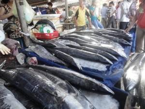 Chợ cá Cửa Lò