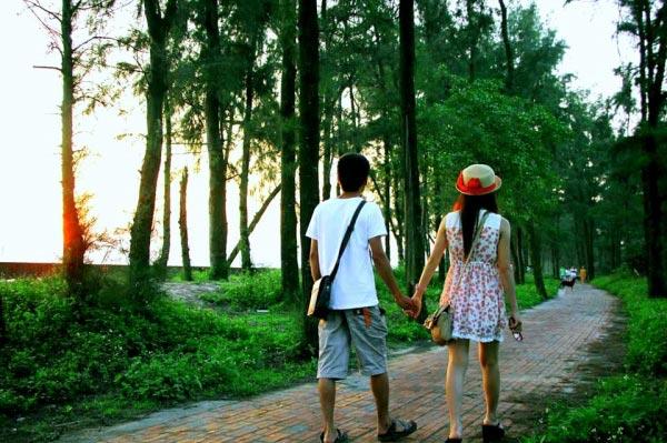 Con đường tình yêu - Cô Tô