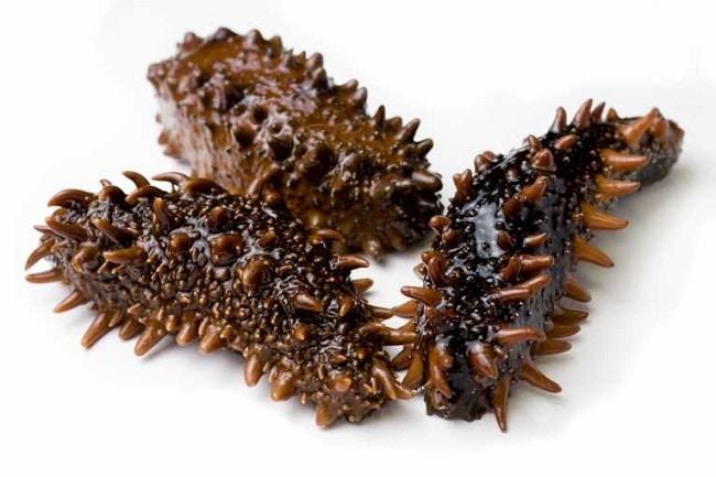 Hải Sâm, đặc sản quý hiếm, bổ dưỡng của biển Quan Lạn