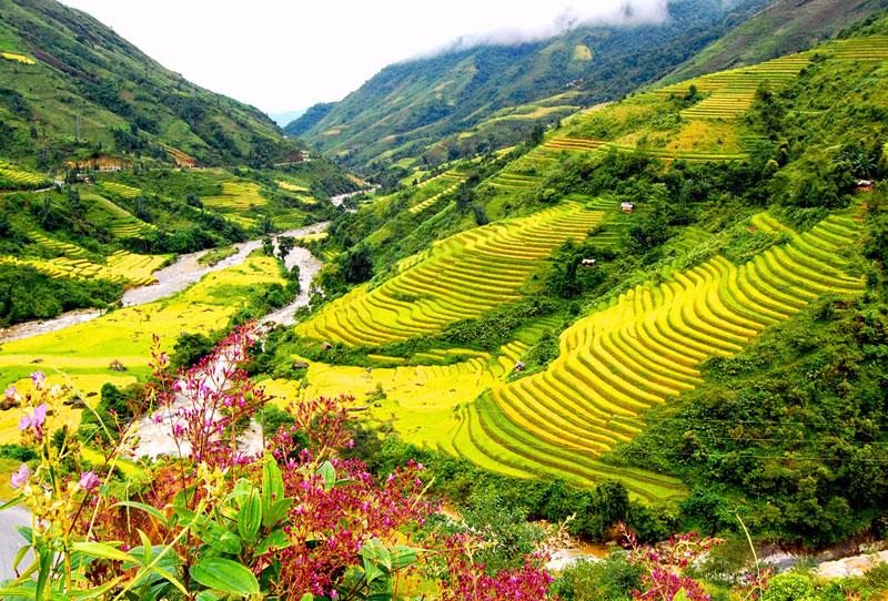 Đà Nẵng - Hà Nội - SaPa - Ninh Bình