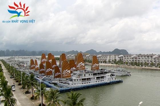 Những con tàu cập bến Tuần Châu