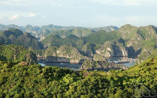 Vườn Quốc gia Cát Bà - khu dự trữ sinh quyển của thế giới