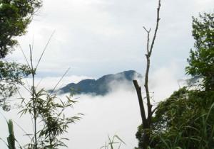 Tư vấn kinh nghiệm du lịch Tam Đảo hè 2014