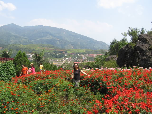 Thung lũng hoa hồng - Điểm đến thơ mộng của Sapa