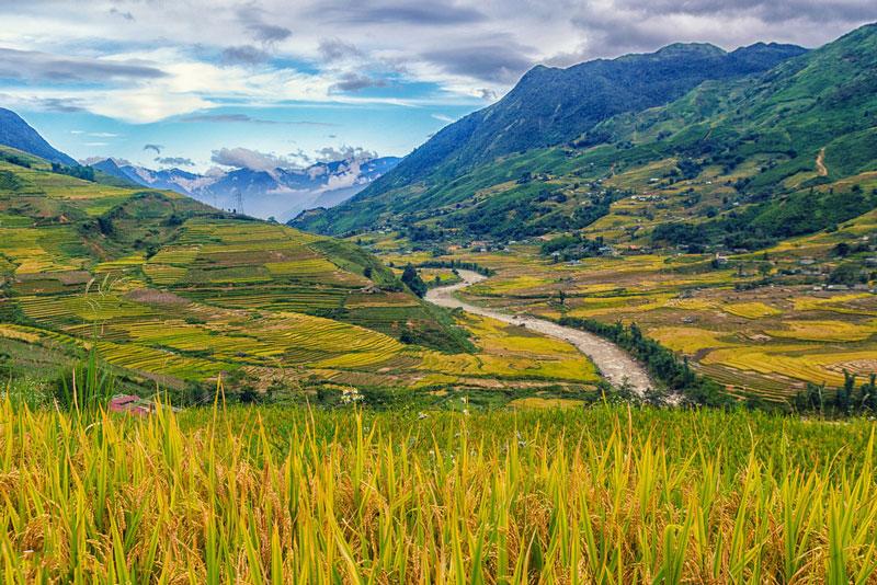 Dòng suối Hoa như con trăn uốn lượn giữa những thửa ruộng trong thung lũng Mường Hoa