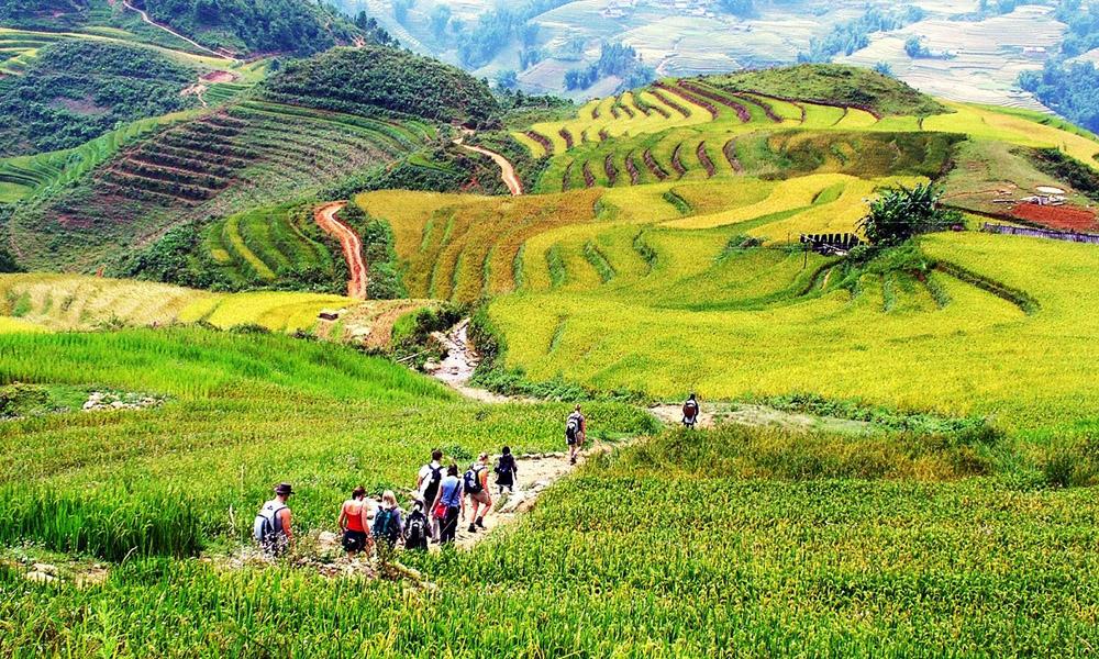 Thung lũng Mường Hoa - Nơi hội tụ vẻ đẹp của núi rừng Sapa