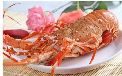Về Hải Hòa ăn Tôm Hùm thơm ngon!