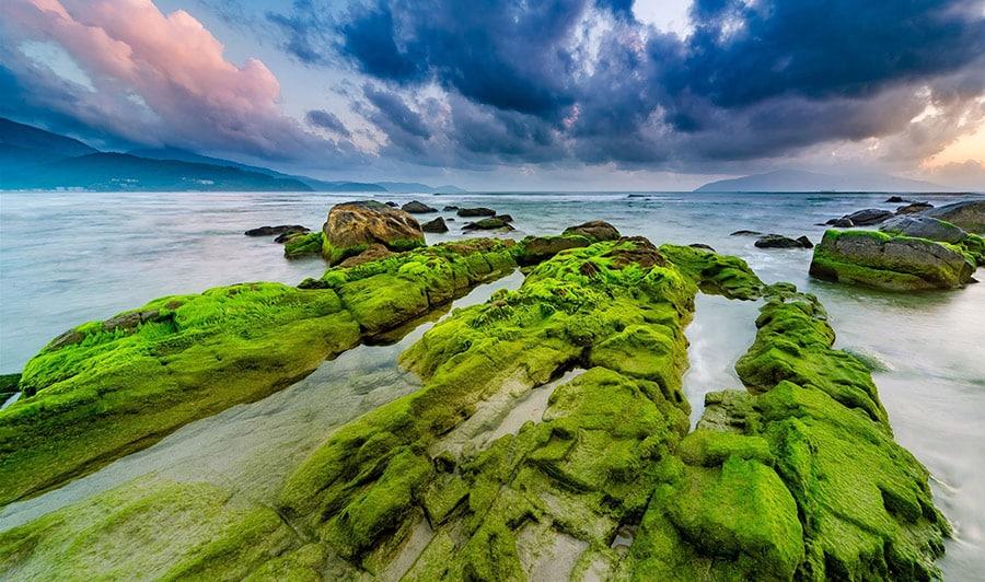 Bãi biển - Rạn Nam Ô