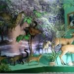 Bảo tàng Lâm Đồng với thiên nhiên sinh động