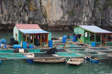 Phố văn hóa trên vịnh Hạ Long