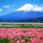 Kinh nghiệm du lịch Nhật Bản leo núi Phú Sĩ