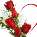 Ý nghĩa của hoa hồng và chocolate trong ngày lễ Tình Yêu